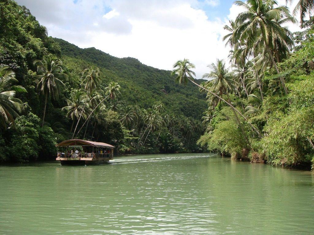 Philippines-rain-forest-Bohol